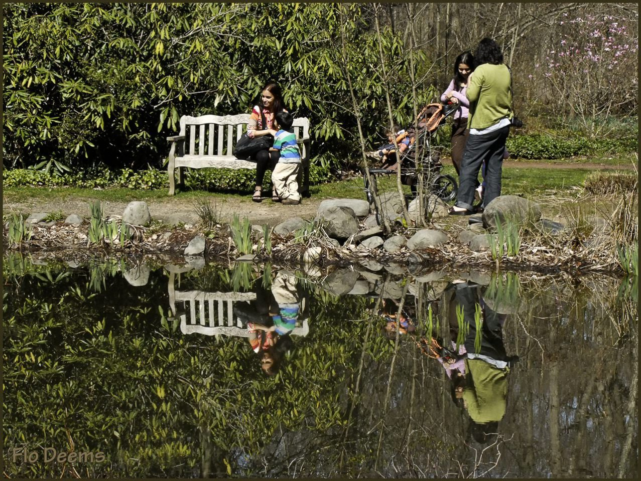 Views from the Bench, Sayen Gardens, Pond & Bridge, by Florence W Deems